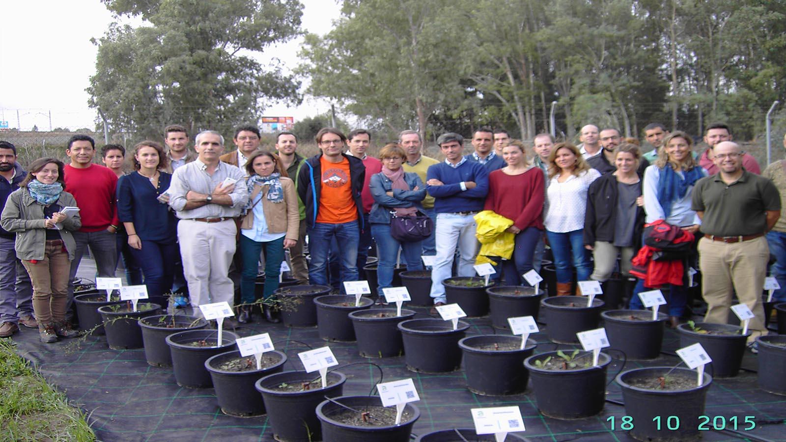 Curso de Malas hierbas frecuentes en Andalucía: identificación Plántula